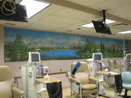 AFAA Mural for Tri-Cities Dialysis