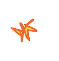 STAR11.png
