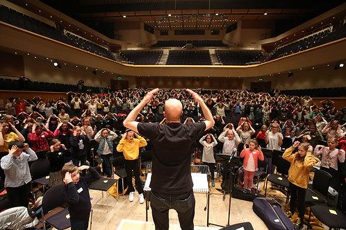 Musicians' Wellbeing