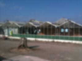 Avant Garden Center_JDC Constructio & Maintenance