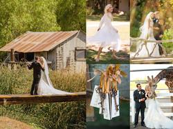 Wedding wix poster