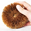 Thumbnail: Eco Coconut Scourer Twin Pack - Eco Cocount