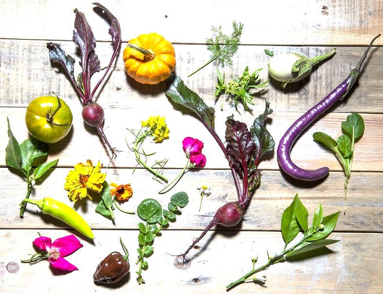 Food Stylist  Johan van der Merwe