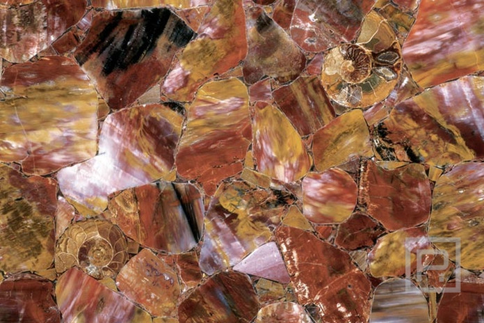 petrostone-MulticolorPetrifiedWood.jpg