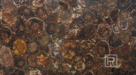 petrostone-Petrified-Wood-Round-Panel.jp