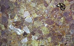 petrostone-Multicolor.jpg