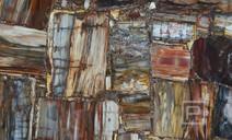 petrostone-Petrified-Wood-Multicolor2.jp