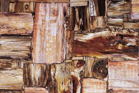 petrostone-Petrified-Wood-Multicolor1.jp