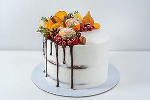 Orange & dark chocolate cake