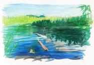 Mosquito Lake- Sketch