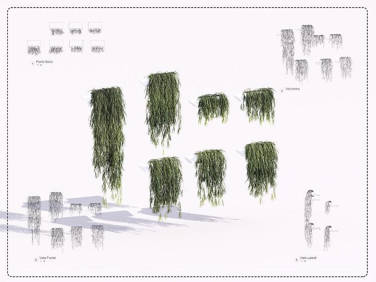 Plant Revit 5 High Quality