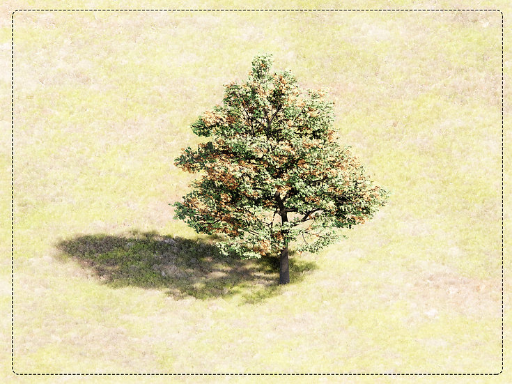 Tree Revit 01 High Quality