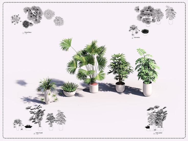 Plant Revit 17 High Quality