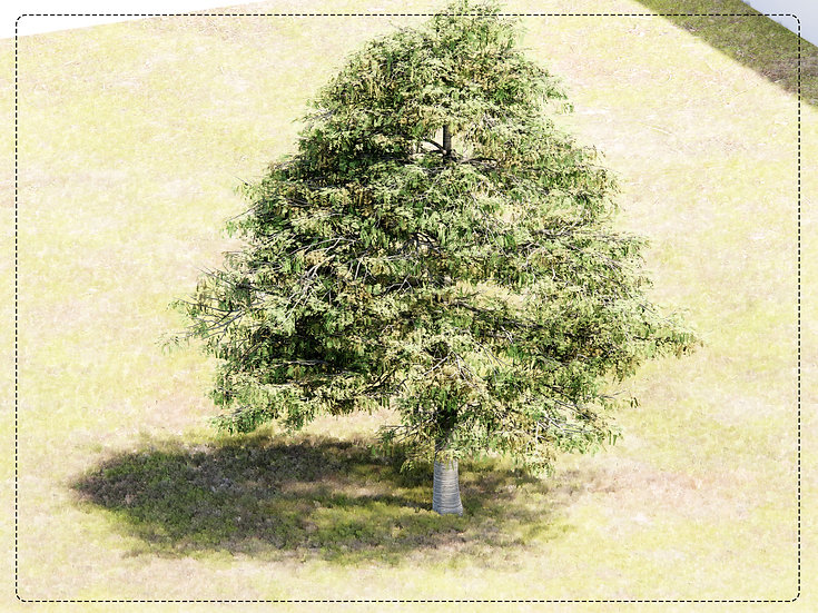 Tree Revit 02 High Quality