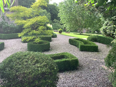 A tour of the garden