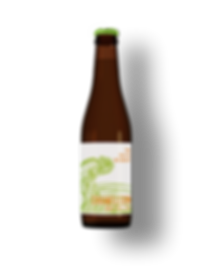 Flasche The Chameleon Pale ALe.png