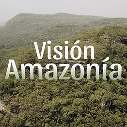 Vision_Amazonía.png