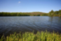 jezero-nove_1.jpg