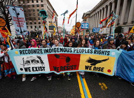 Indigenous Activism and Social Change.