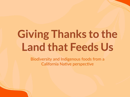 Giving Thanks to the Land That Feeds Us