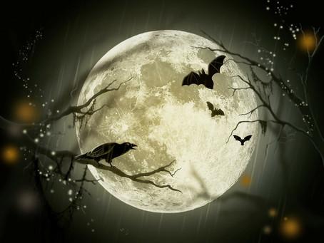 Halloween: cómo superar el miedo al miedo