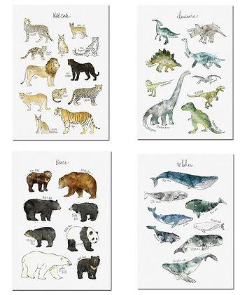 Plakáty zvířecí mapy | 4 vzory