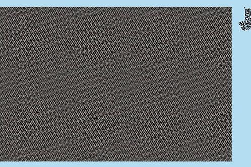 Gofer Racing Carbon Fiber Decal Sheet