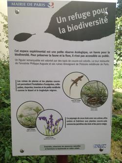 A refuge for biodiverity