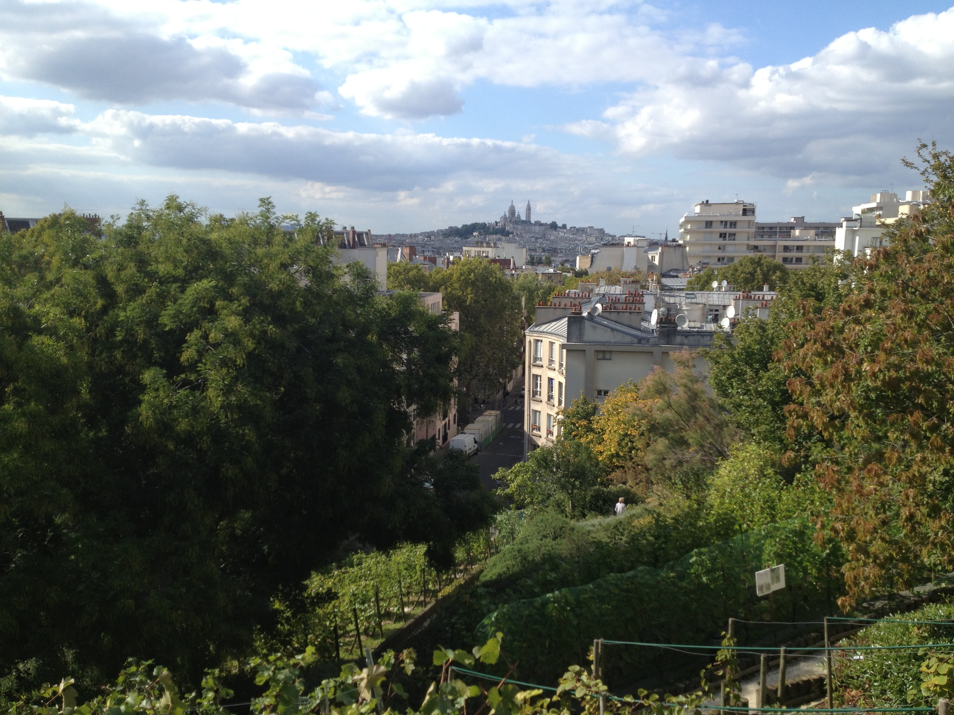 View of Sacre Coeur from Bergeyre