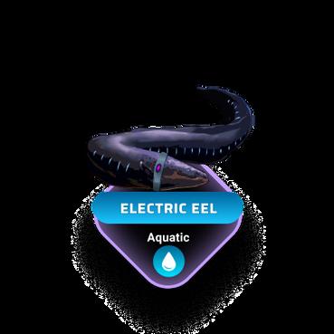 Electric Eeel.png