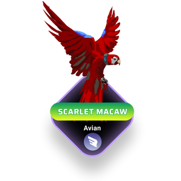 Scarlet Macaw.png