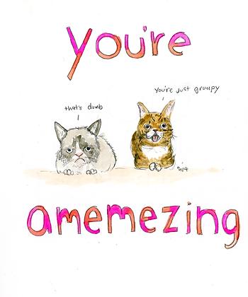 You're Amemzing