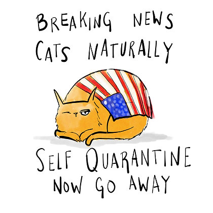 Cats Naturally Self Quarantine