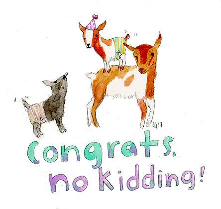 Congrats, No Kidding!