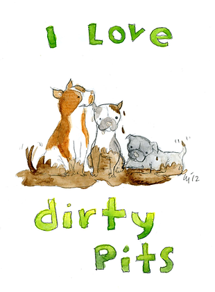 Dirty Pitts