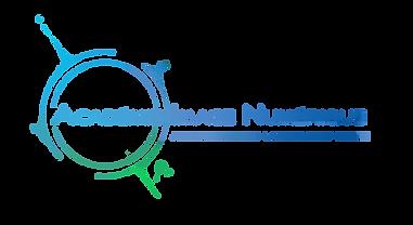 logo in(2) - Copie.png