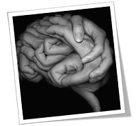 neurociência, lego serious play, play in company