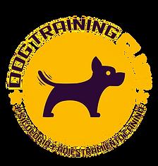 Dog Training Club chile adiestramiento canino