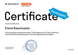 Certificate_Skyteach-86