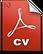 cv-PDF-icon.png