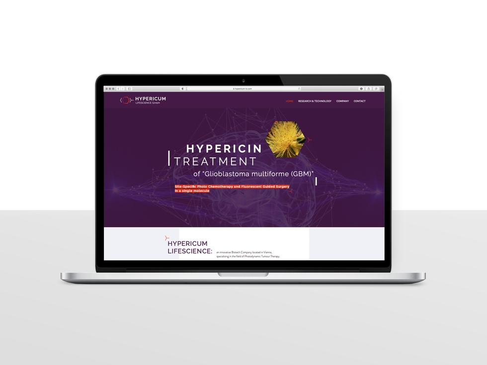 hypericumLS_02.png