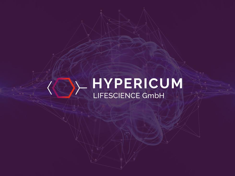 hypericum_google.jpg