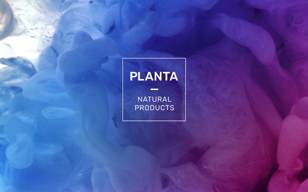 planta_web01.jpg