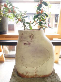 おなか痛い 植木鉢