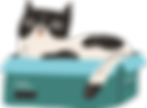 cat1.png