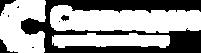 Лого_Созвездие_total_white.png