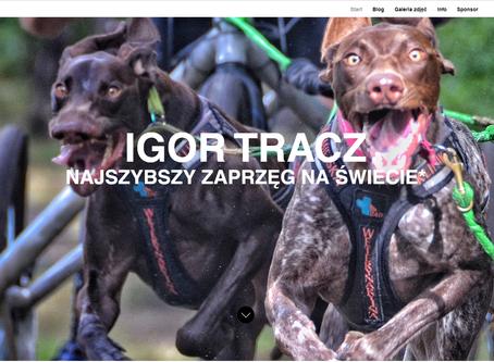 Blog dla Igora odpalony :)