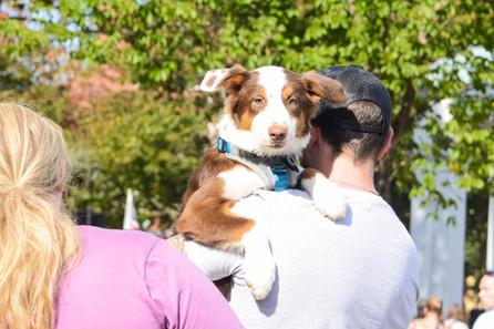man holding dog in salem.jpg