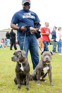 man with dogs in new bedford.jpg