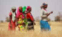 vrouwen-in-hoog-gras.jpg
